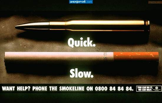cigarette smoking slowly kills the country Report abuse home opinion drugs / alcohol / smoking smoking kills smoking kills november 8, 2011 by brookeh cigarette smoking does not only affect.