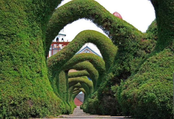Садовник выбоин - прикольные фото, анекдоты и видео