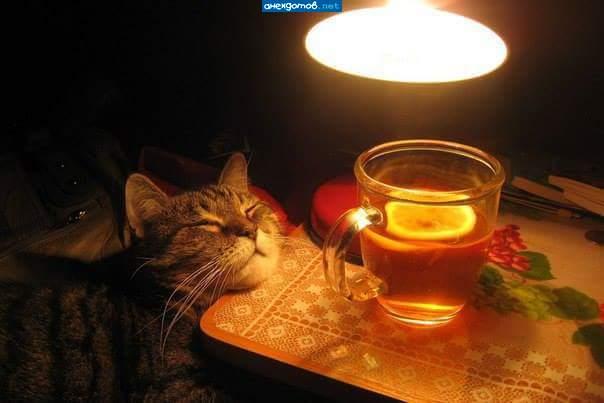 вечерний чай картинки