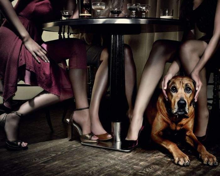 Между ногами под столом фото 20-616