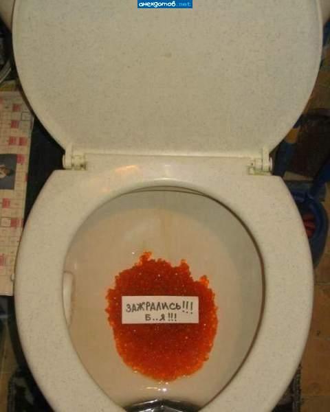 прикольные картинки в туалет: