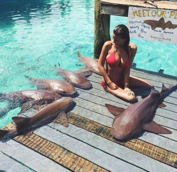 прикольные рыбы фото