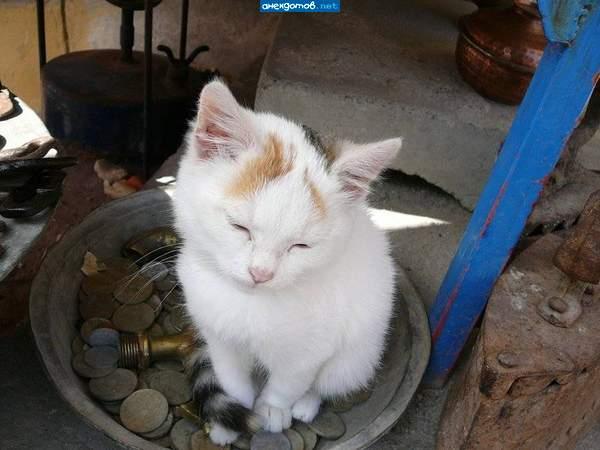 http://anekdotov.net/pic/postcards/cat/0125_2254_100p.jpg